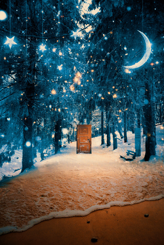 no boundaries. #freetoedit #winter #summer #door #nowhere #surreal #bright #blue #brown #forest #betweentwoworlds