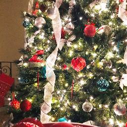pcredandgreen redandgreen pcchristmastrees christmastrees