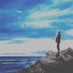freetoedit lone sea birds girl