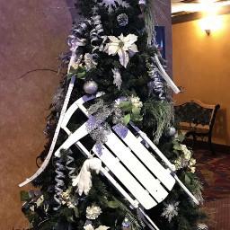 pcchristmastrees christmastrees freetoedit tree sled