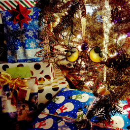 mychristmasstree pcchristmastrees christmastrees mypic