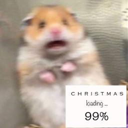 freetoedit hamstermeme