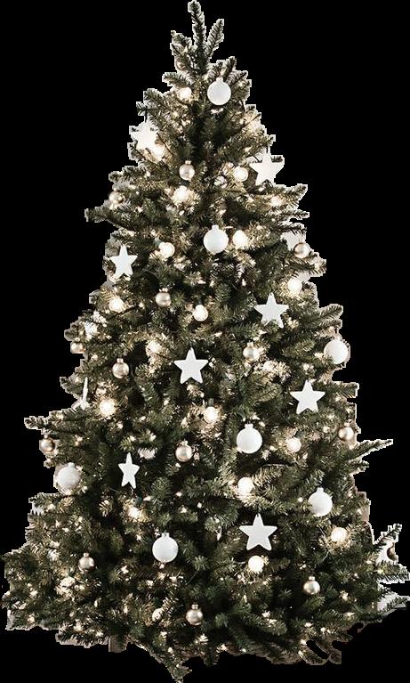 #Christmas #Christmastree #tree #decoration #holidays #white #beautiful #snow #treelights #christmaslights #year2019 #happynewyear