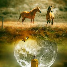vipshoutout upsidedown nature horses moon girl conseptual surreal surrealist surrealism be_creative myart myedit