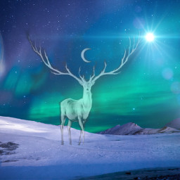 ircskyloversdelight skyloversdelight freetoedit earth deer