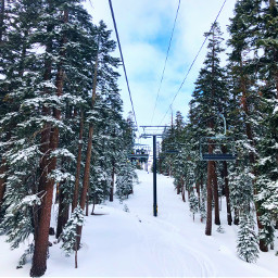 winter forest ski skiing snowboard pcsnow pcsnowyslopes fcholidaymood holidaymood