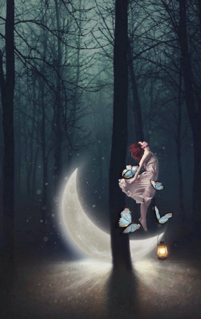 I hope you like this edit :)  #myedit #butterflies #blue #moon #moonedit #girl #standing #floating #lantern #forest #night #nature  @freetoedit @picsart