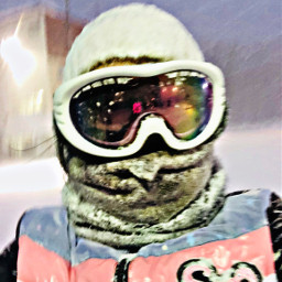 freetoedit fun ski snowing snow pclastselfieof2018