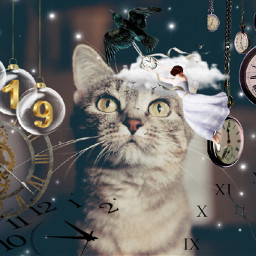 myedit cute cat clocks watches freetoedit