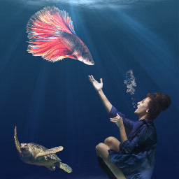 freetoedit water underwater woman turtle ecunderwater