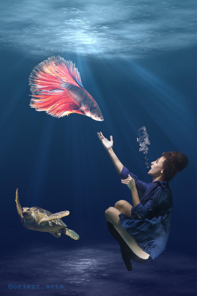 #freetoedit #water #underwater #woman #turtle #fisch #colours #ecunderwater