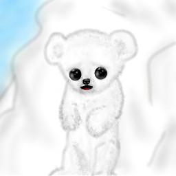 dcpolarbear polarbear oso osito osopolar