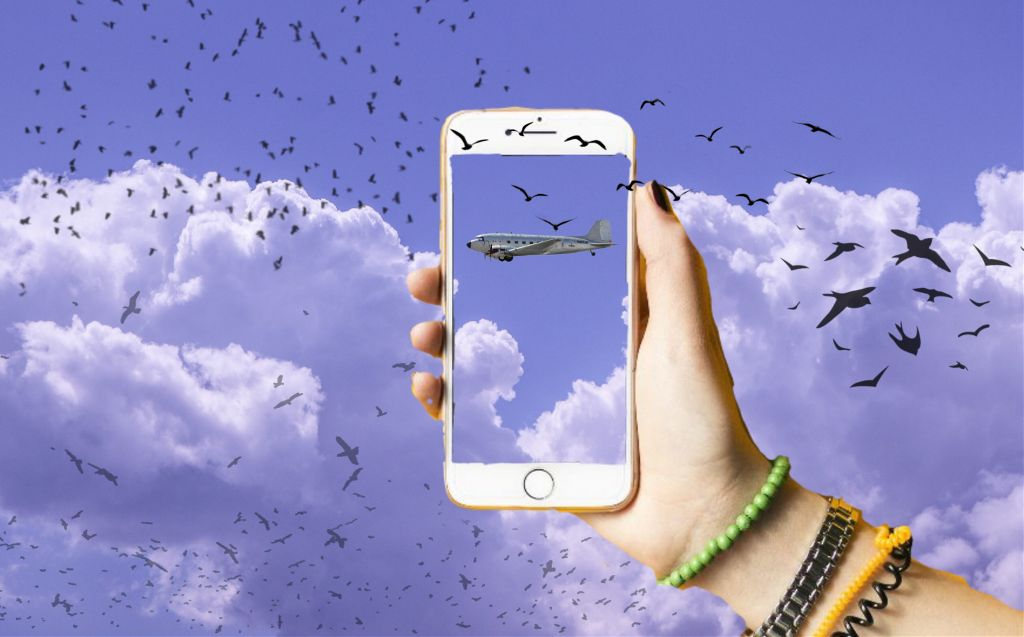 #freetoedit #poland #birds