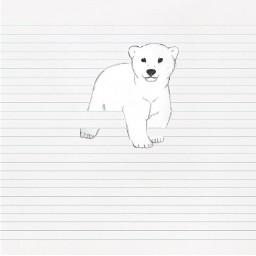 dcpolarbear polarbear savetheanimals