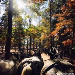 explore interesting photo discovery discover scene scenes scenery pcwakeupworld