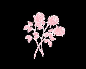 rose flower pink flowers tumblr freetoedit