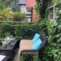 pcfurniture furniture photography photochallenge backyard