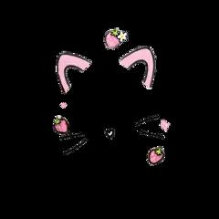 tumblr kawaii filter cat catears freetoedit