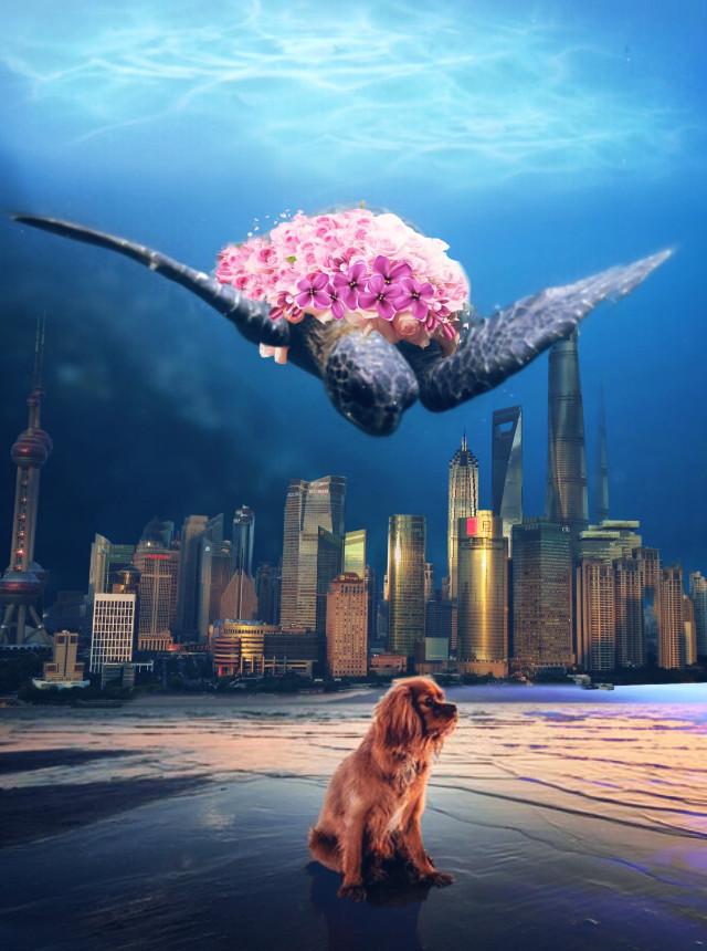 #freetoedit #fantasy #dog #tortilla #city #sea
