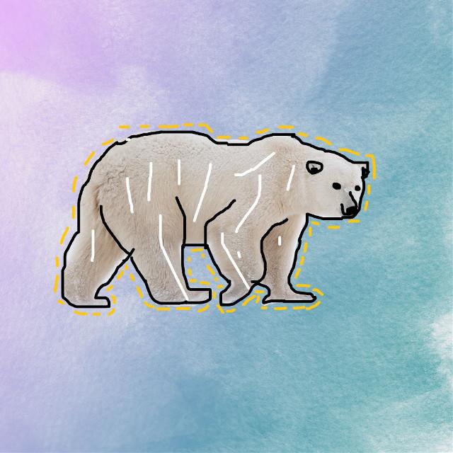 #polar #polarbear #oso #osopolar