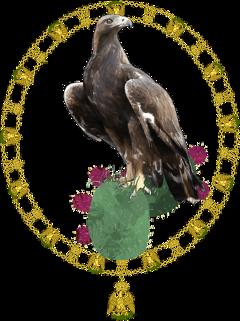 freetoedit sceagles eagles