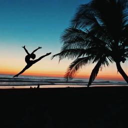 freetoedit palm dancer