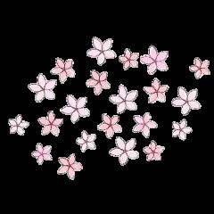flower flowers tumblr kawaii nature freetoedit