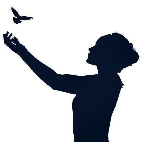 #freetoedit #silhouette #people #remix #woman #bird #picsart
