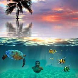 ecunderwater underwater freetoedit ariel littlemarmaid