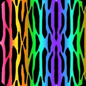 Rainbow Background Wallpaper Zebra