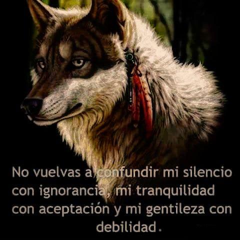 Wolf Frasesdelobos Lobos Frases