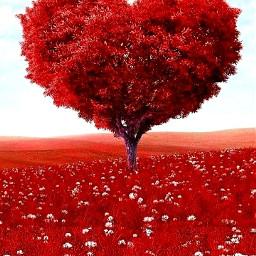 freetoedit tree love loveheart trees