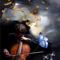freetoedit cello butterflies art fantasy