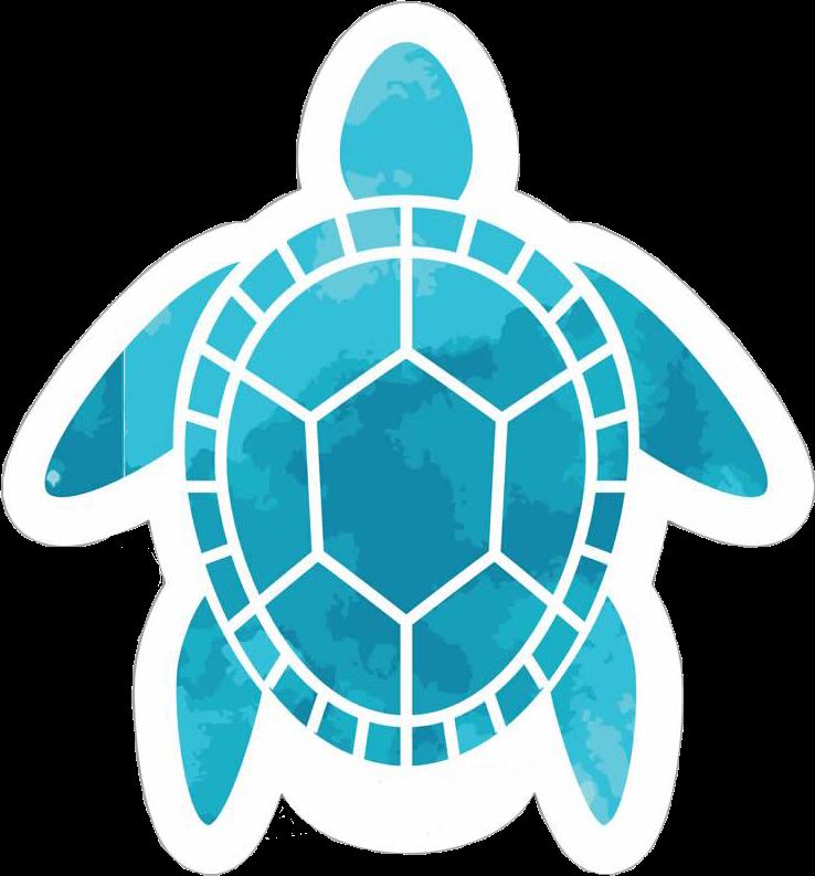 Beach Turtle Sea Aloha Hawaii Aesthetic Blue Aqua Water