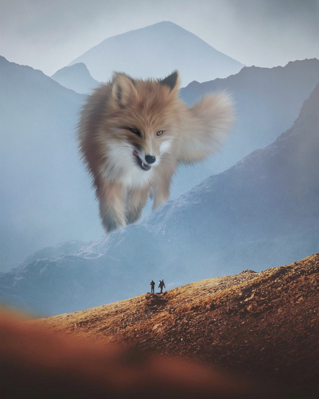 #freetoedit #fox #montain #edit #surreal #manipulation #creative @picsart