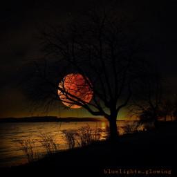 myphotography lunareclipse twilighteffect nightphotography myeditedphoto freetoedit