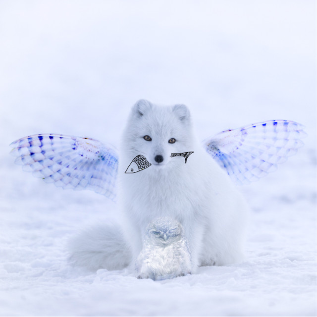Family. Insta: @p.teres #dog #owl #interesting #fly #draw #doodle #fun #animal #art #freetoedit