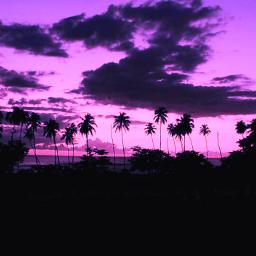 sunset skylover curvestool fltr freetoedit