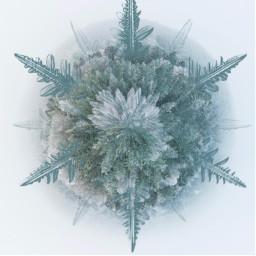 ircwinterbliss winterbliss freetoedit tinyplanet snowflake
