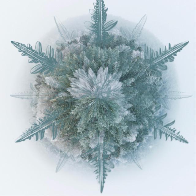 #freetoedit #tinyplanet #snowflake #ice #beauty #winter