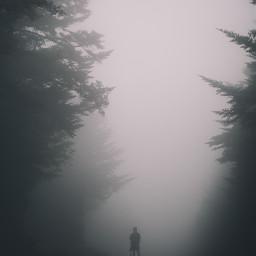 fog foggy nature backgrounds background freetoedit