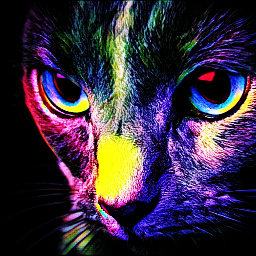 freetoedit cat colourbrightmagiceffect overlay easyedit