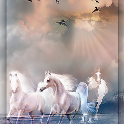 freetoedit myedit landscape doubleexposures horses