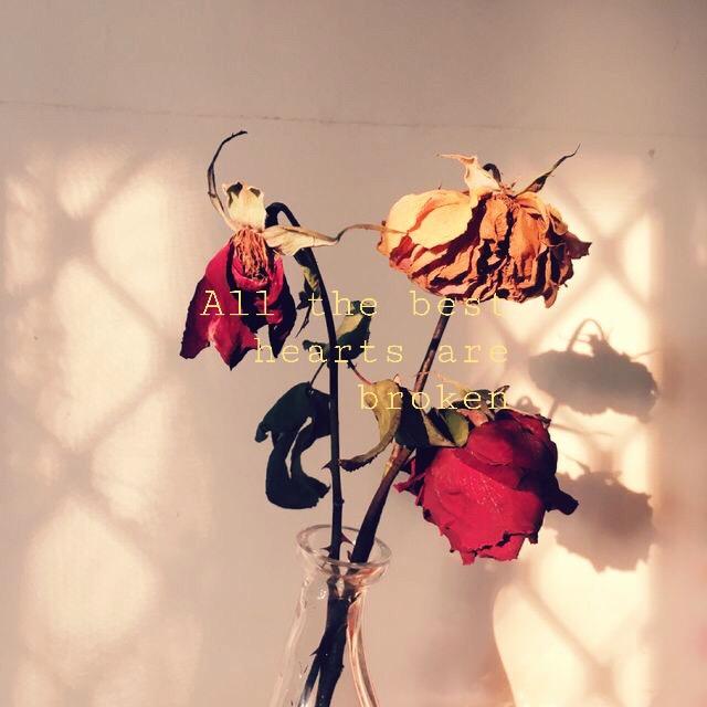 quotes depressing art flowers wilting brokenheart love