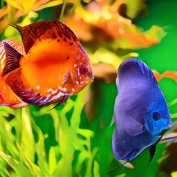 freetoedit fish fishes ocean coralreef