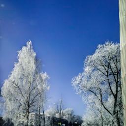 freetoedit winter snow frosty