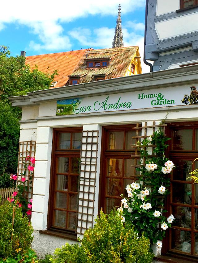 #freetoedit #shopwindow #flowers #colors #germany #ulm #bayern #photography #remixit
