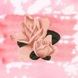 srcpinkbrush pinkbrush freetoedit rose aestheticallypleasing