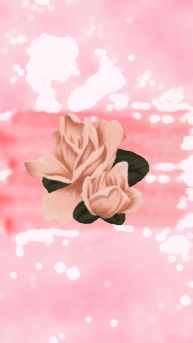 Submission Number Two #freetoedit #rose #aestheticallypleasing #pink #contestentry #aesthetic