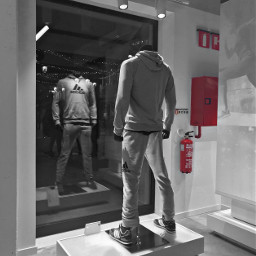freetoedit pcstorefront sportswear iconicbrand storefront
